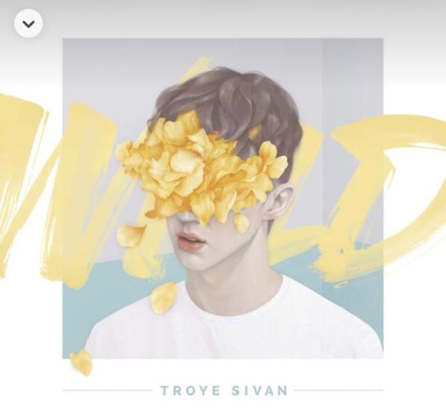 WILD by Troye Sivan